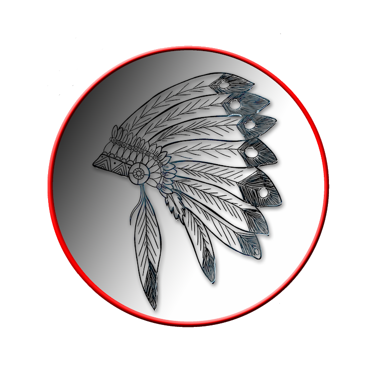 Toolmaster Video Downloader logo